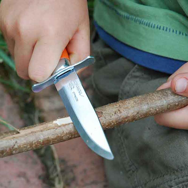 موراکنیو® اسکات چوب درخت توسکا